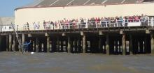 Jono waves to the crowds, back at Clacton pier